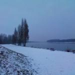 Der Rhein im Winter